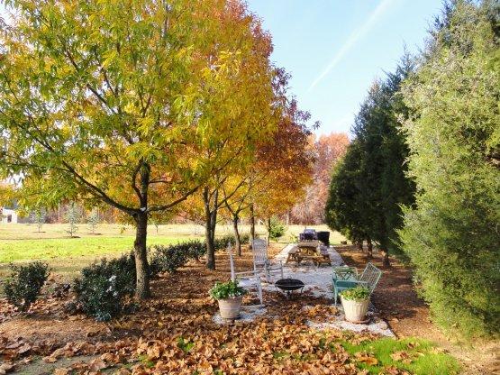 garden-allee
