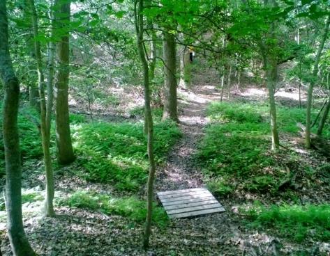 Underwood Trail path